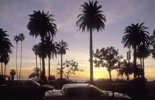 Santa Monica, Venice, pacific coast (64 images)