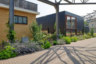 RAG building, green houses, plants and flowers (images)