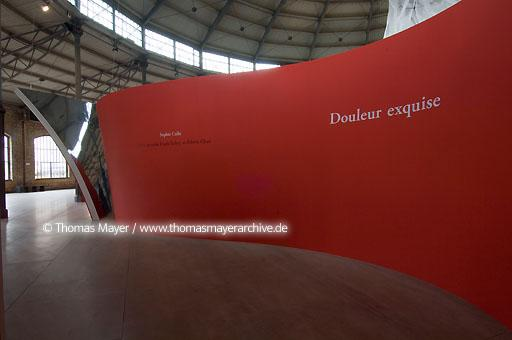 Douleur exquise Sophie Calle production Frank Gehry and Edwin Chan