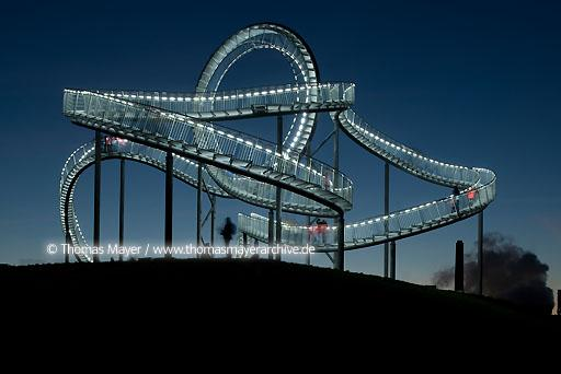 Tiger & Turtle