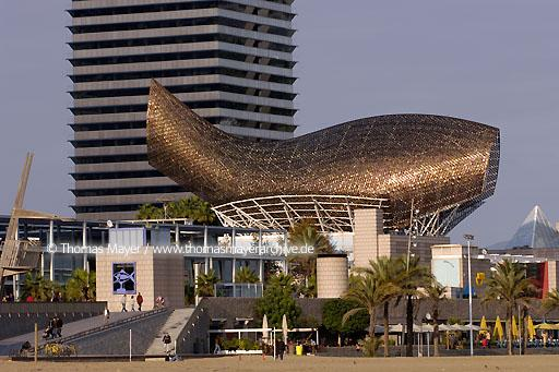 "fish-sculpture by Frank Gehry ESP, Spain, Barcelona, fish-sculpture ""Peix"" by Frank Gehry at the Olympic Harbour  068CS20061119D1127"