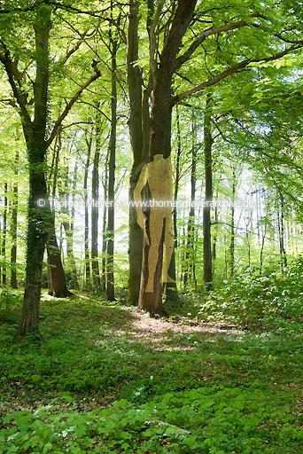 "Hans Lemmen DEU, Germany, Osnabruecker Land, Colossal, exhibition in public spaces on the occasion of 2000 years of the Varus Battle, curator: Jan Hoet, sponsorship: Landschaftsverband Osnabruecker Land, ""Golden Boy"" by Hans Lemmen in Park Kalkriese  150AA20090422D4568"