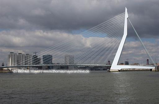 Erasmus Bridge Rotterdam Erasmusbridge, Rotterdam, Netherlands, connects the city center with the district Kop van Zuid over the river Nieuwe Maas, architects: Ben van Berkel and Caroline Bos 1996  088AA20020323D5227